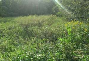 Land for Sale, ListingId:48534972, location: 1898 Willow Road Greensboro 27401