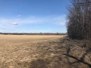 Featured Property in Woodville, ON K0M 2T0