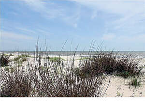 Real Estate for Sale, ListingId: 44320120, Cape San Blas, FL  32456