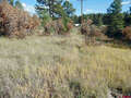 Real Estate for Sale, ListingId:41539963, location: 26 Laurel Drive Pagosa Springs 81147