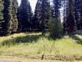 Real Estate for Sale, ListingId:40189293, location: Lot 30 Eagle Drive McCall 83638
