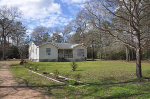 Featured Property in Plantersville, TX 77363