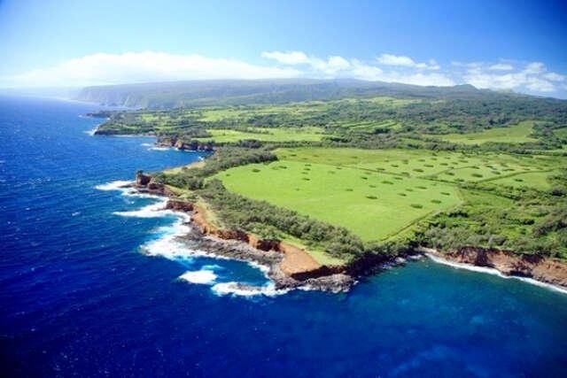 Investment for Sale at Kapanaia Bay Road Kapaau, Hawaii 96755 United States