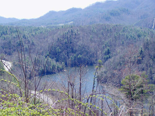 Additional photo for property listing at 000 Conley Springs Road  Waynesville, North Carolina 28786 United States
