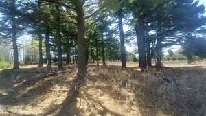 Land for Sale, ListingId:55064443, location: Lot Six Tall Pines Iron Mountain 49801