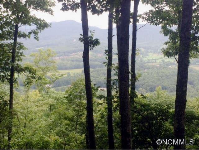 Land for Sale at 45 Deer Grass Court #60 Arden, North Carolina 28704 United States
