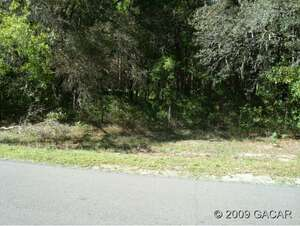 Land for Sale, ListingId:20902742, location: 00 NW 165 Street Fanning Springs 32693
