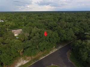 Featured Property in North Pt, FL 34288