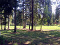 Real Estate for Sale, ListingId:40169770, location: Lot 28 Eagle Drive McCall 83638