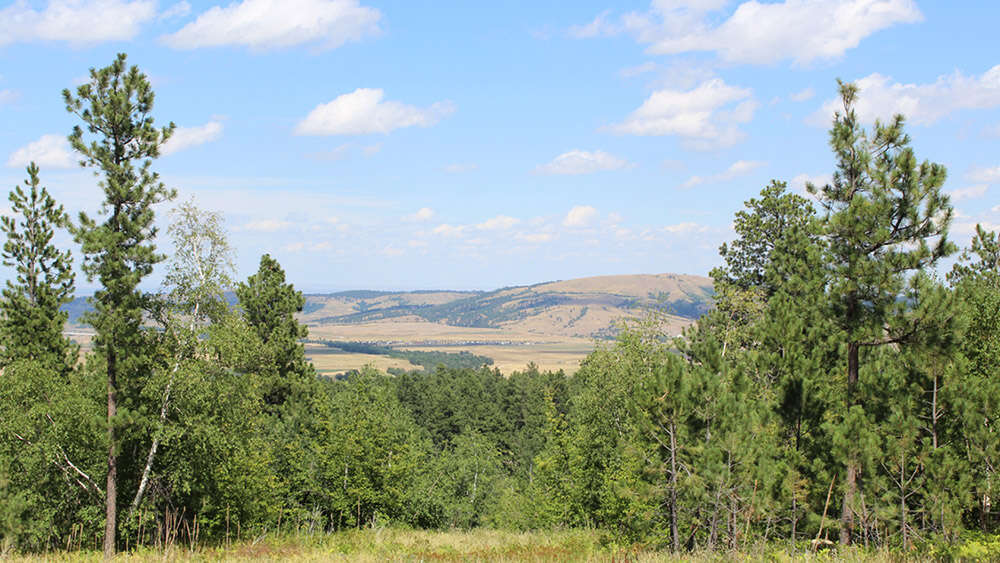 Investment for Sale at Semones Property Spearfish, South Dakota 57783 United States