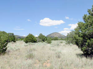 Real Estate for Sale, ListingId: 36046880, Carrizozo, NM  88301