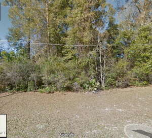 Land for Sale, ListingId:36089785, location: 00 174th Pl Fanning Springs 32693