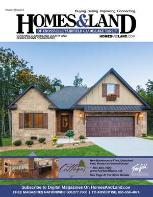 HOMES DIGEST Magazine Cover. Vol. 32, Issue 03, Page 41.