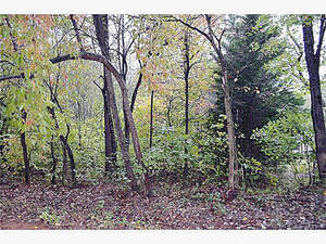 Land for Sale, ListingId:48394045, location: 00 Barclay Trail Lincolnton 28092