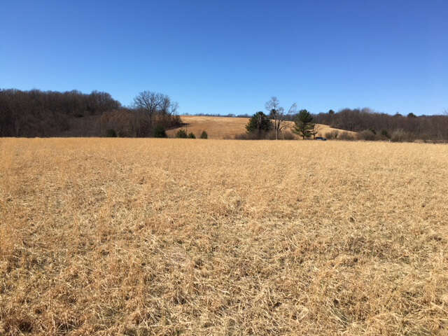 Investment for Sale at Tbdold Rt 73 Bruceton Mills, West Virginia 26525 United States