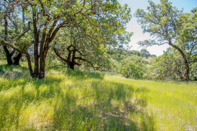 Land for Sale at 930 Shiloh Oaks Road Windsor, California 95492 United States