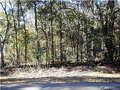 Real Estate for Sale, ListingId:30731530, location: LOT 1 Lot 1 Appalachee Trail Marianna 32446