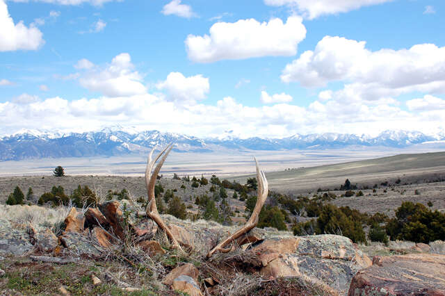 Land for Sale at 640.072 Acres Moran Creek Ennis, Montana 59729 United States