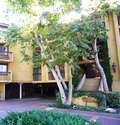 Rental Homes for Rent, ListingId:49665771, location: 3481 Stancrest, Unit 235 Glendale 91208