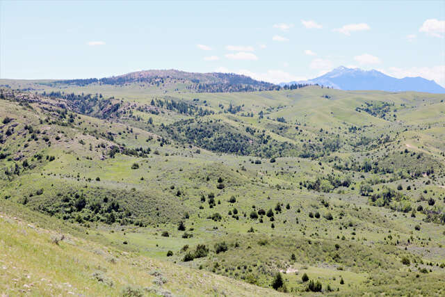 Single Family for Sale at 1790 Esterbrook Road Douglas, Wyoming 82633 United States