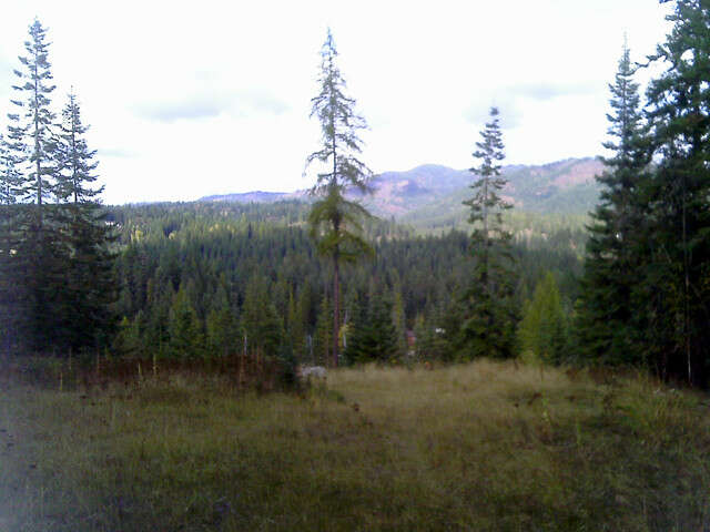 Additional photo for property listing at 15410 N Wildcat Creek Rd  Hayden Lake, Idaho 83835 United States