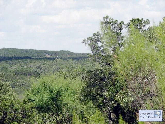 Land for Sale at 4849 Fm 306 New Braunfels, Texas 78132 United States