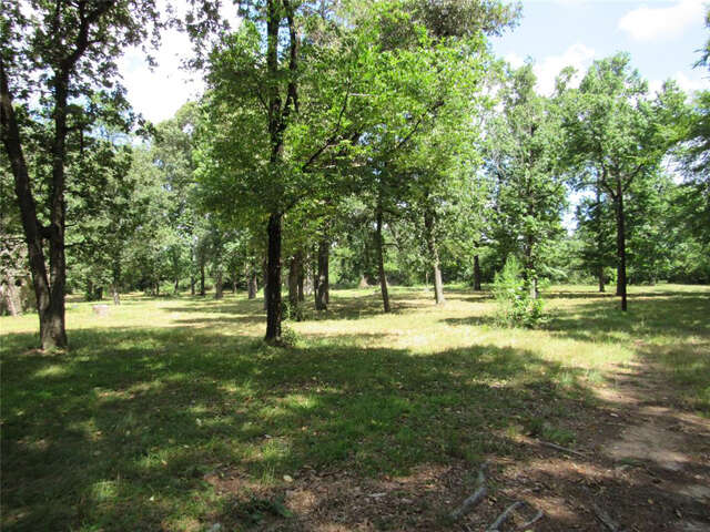 Land for Sale at 26401 Fm 2978 Road Magnolia, Texas 77354 United States