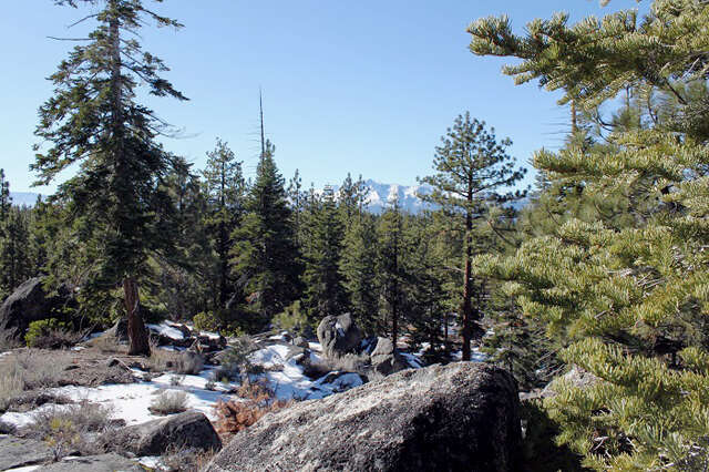 Land for Sale at 176 Hwy 50 Zephyr Cove, Nevada 89448 United States
