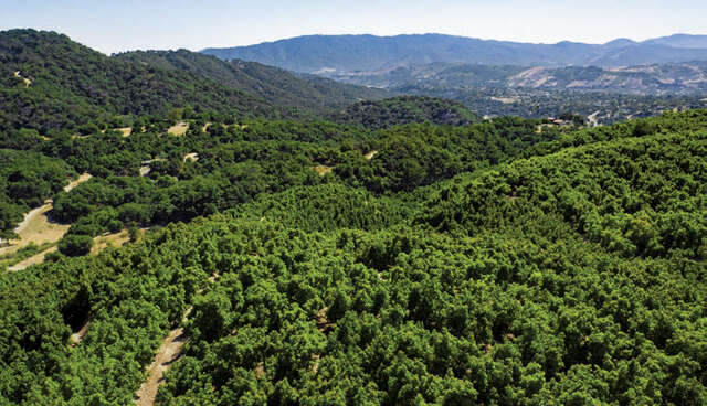 Single Family for Sale at Sunrise Hill Lane Montecito, California 93108 United States