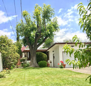 Featured Property in Tujunga, CA