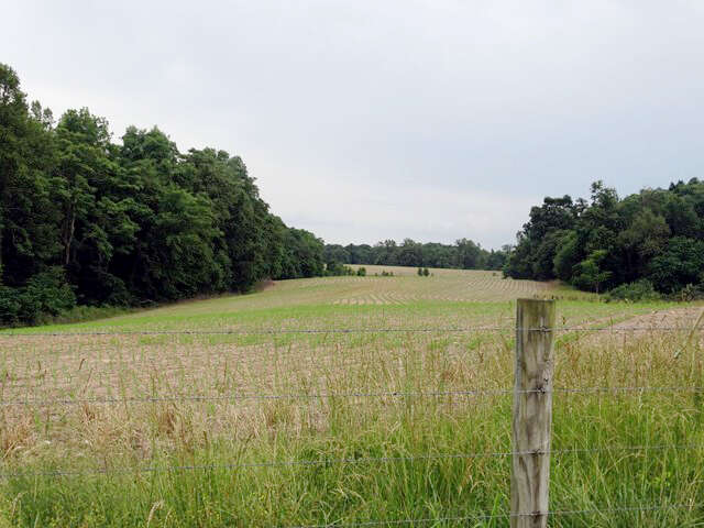 Single Family for Sale at 00 Richard Roberts Rd Sparta, Tennessee 38583 United States