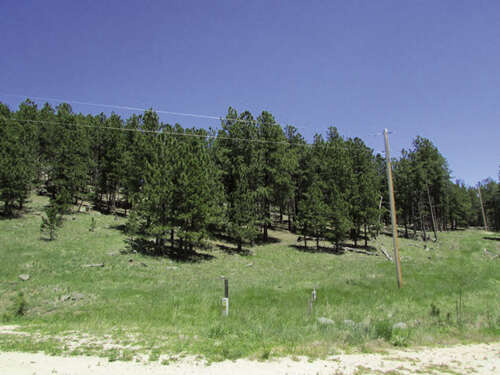 Real Estate for Sale, ListingId:52245440, location: TBD Pay Dirt Pass Custer 57730