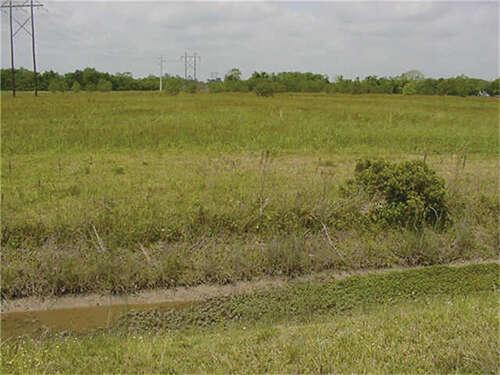 Land for Sale at 0 Fm 646 Santa Fe, Texas 77510 United States