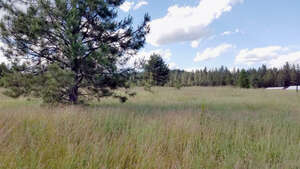 Featured Property in Careywood, ID 83809
