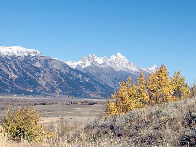 Land for Sale at 555 Spur Rd Jackson, Wyoming 83001 United States