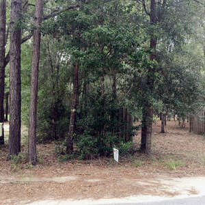 Featured Property in Darien, GA 31305