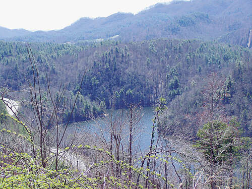 Land for Sale at 000 Conley Springs Road Waynesville, North Carolina 28786 United States