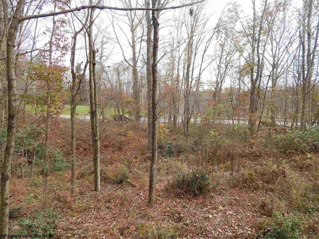 Land for Sale at 0 Fairmont Avenue Fairmont, West Virginia 26554 United States
