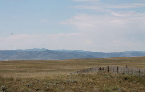 Investment for Sale at Roundup Road Pastur Glenrock, Wyoming 82637 United States