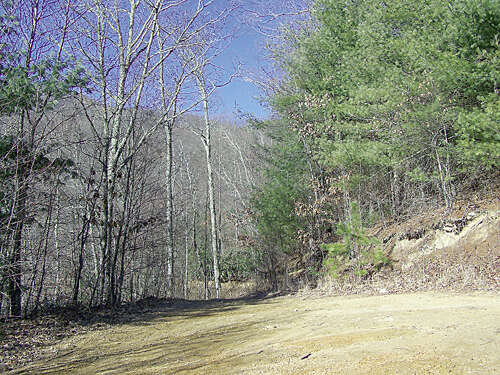 Land for Sale at 000 Cherry Hill Drive Waynesville, North Carolina 28786 United States