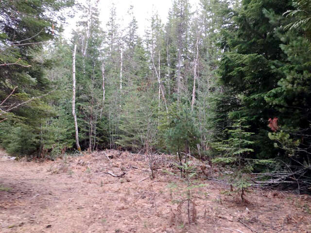 Featured Property in SANDPOINT, ID, 83864