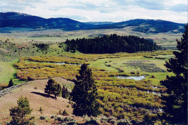 Land for Sale at Spring Creek Hunt & Fish Townsend, Montana 59644 United States