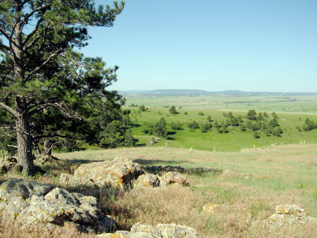 Investment for Sale at Tbd Mona Rd Aladdin, Wyoming 82710 United States
