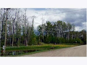 Land for Sale, ListingId:40648344, location: 2-713072 RR 51 Road, County of Grande Prairie T8W 0H2