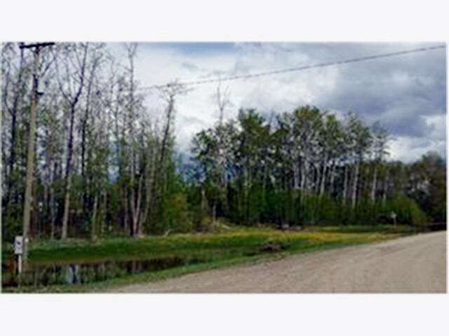 Featured Property in COUNTY OF GRANDE PRAIRIE, AB, T8W 0H2