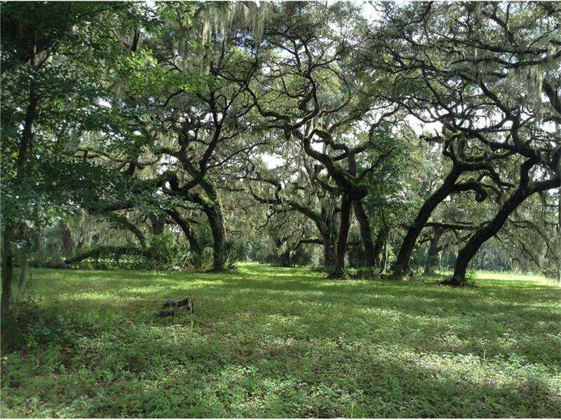 Land for Sale at 265 Georgetown Shortcut Road Crescent City, Florida 32112 United States