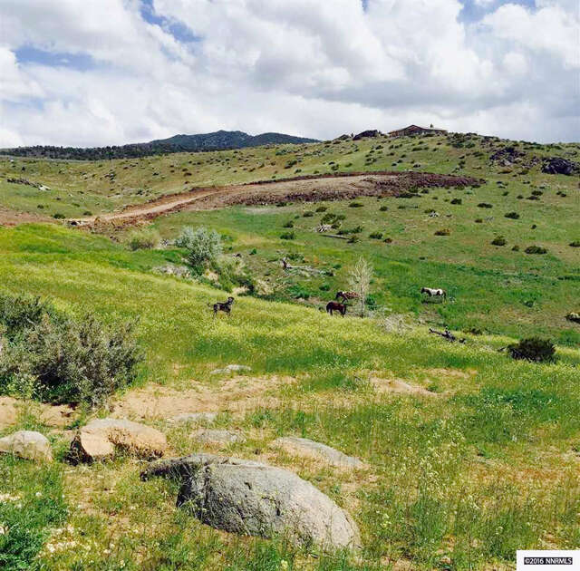 Home Listing at 0 Majestic View Drive, RENO, NV