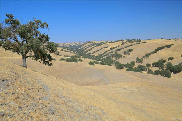 Land for Sale at 2150 Pine Canyon Road Paso Robles, California 93446 United States
