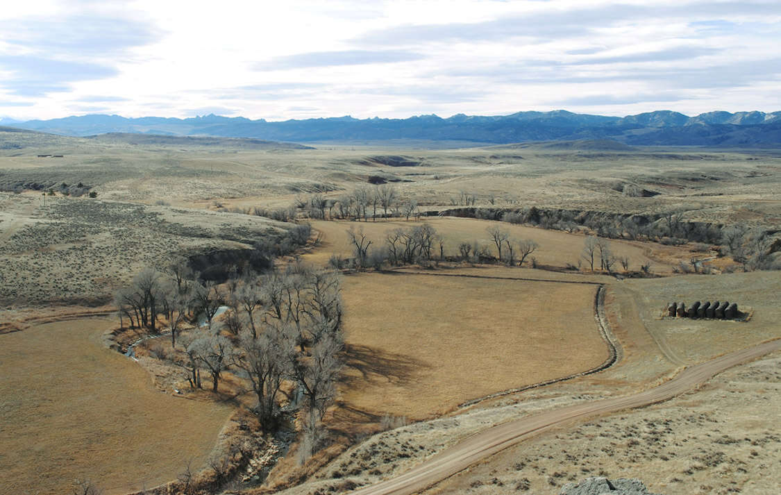 Investment for Sale at Y-Knot Ranch Douglas, Wyoming 82633 United States