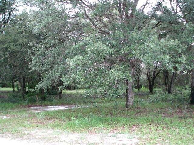 Land for Sale at 31413 Brantley Branch Road Eustis, Florida 32726 United States